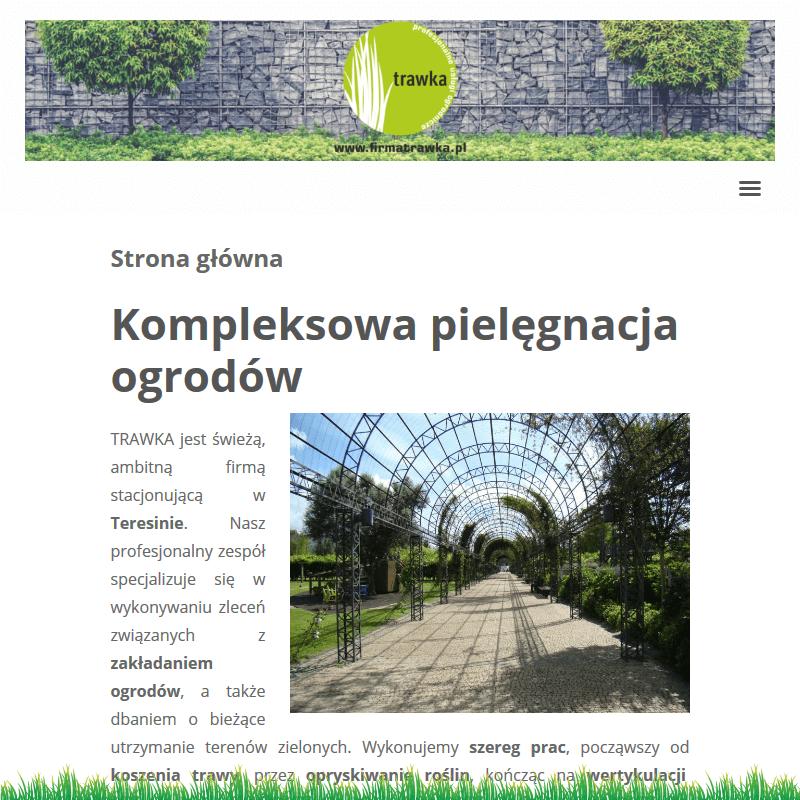 Wertykulacja trawnika teresin w Warszawie